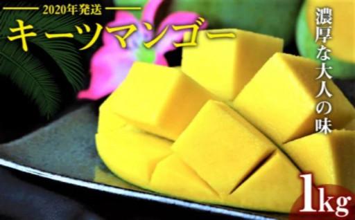 【2020年発送】濃厚なキーツマンゴー1kg