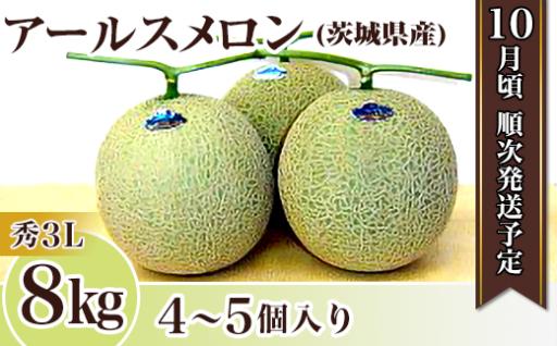 アールスメロン【秀3L】8kg(4~5個)