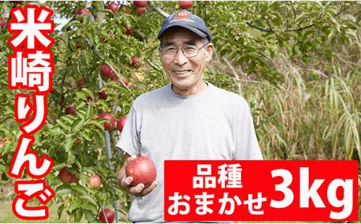 ※予約開始※米崎りんご品種おまかせ3㎏