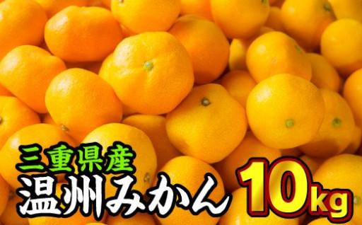 三重県産 温州みかん(家庭用)10kg