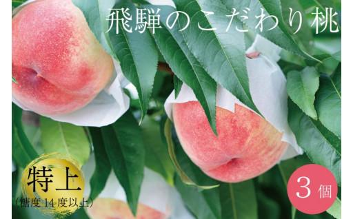飛騨の桃 桃 特上 糖度14度以上 3玉 白桃