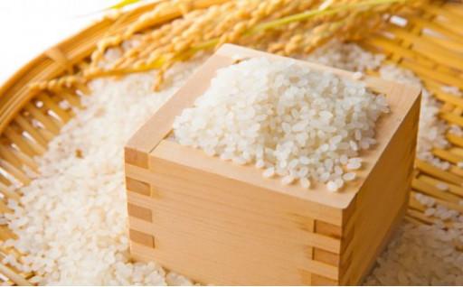 冷めてもおいしい⁉農家さん自慢のお米2品種セット