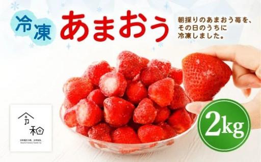 【予約販売 1月から発送】冷凍あまおう 2kg