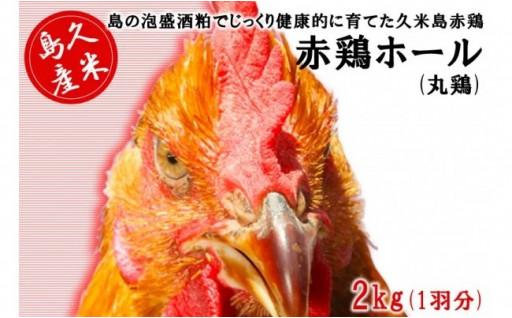 島の泡盛酒粕で育てた 久米島赤鶏ホール2kg