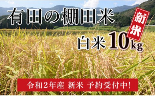 減農薬米・令和2年産 有田の棚田米・白米10kg