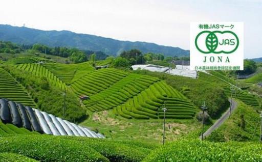 #海外でも愛される有機の宇治茶