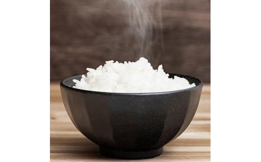 【新鮮米】さがびよりの取り扱いを開始しました