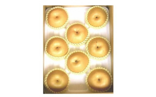 【フルーツの秋】たっぷり果汁の美味しい新興梨♬