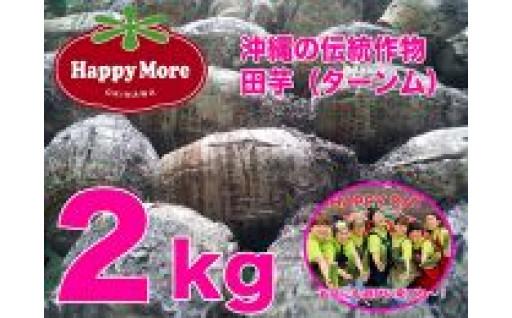 【沖縄伝統作物】自然栽培田芋(ターンム)2kg