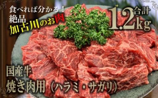 食べればわかる!加古川のお肉☆