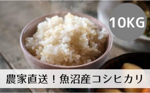 【令和2年産】農家直送魚沼コシヒカリ「山清水米」