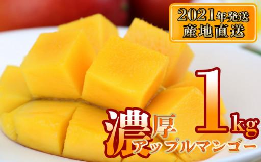 【2021年発送】濃厚沖縄アップルマンゴー1kg
