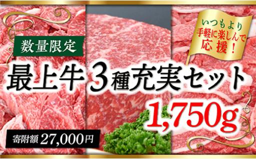 ニコニコエール品 最上牛3種充実セット1750g