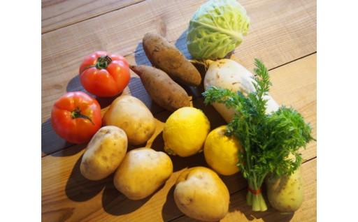 季節の朝採れ野菜が届く♪