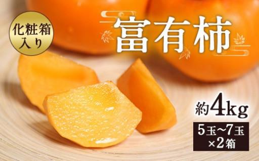 富有柿 約4kg 1箱5~7玉×2箱
