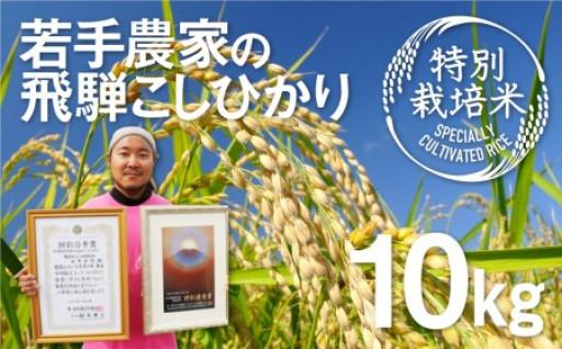 飛騨の新米!特別栽培米こしひかり10kg