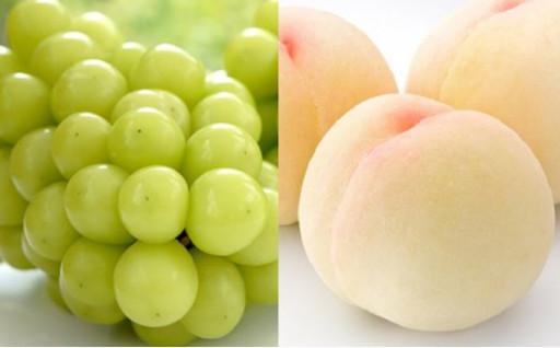 【2021年発送】白桃・ぶどうの先行受付スタート