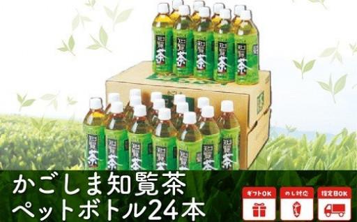 【全12回】かごしま知覧茶ペットボトル定期便