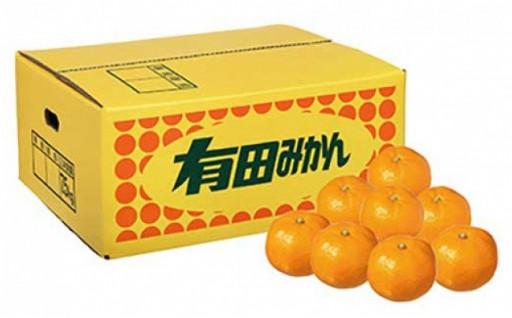 ★有田の味 早採りみかん Sサイズ7.5kg★