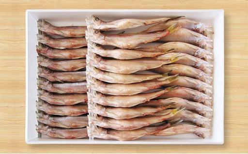 おうちで楽しむ旬の北海道産ししゃもの自然の旨み!