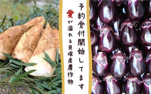 予約受付🙆生産者の愛💜が溢れる貝塚産農産物!