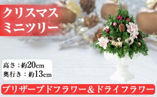 《数量限定・期間限定》クリスマスツリーミニサイズ