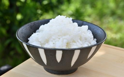 まだまだ新米が人気です!新鮮なお米をお届けします