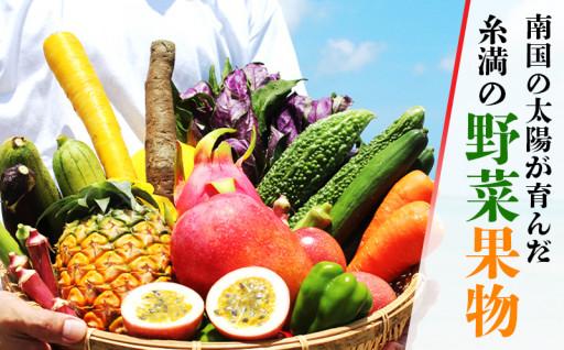 南国の太陽が育んだ糸満の野菜果物をご紹介