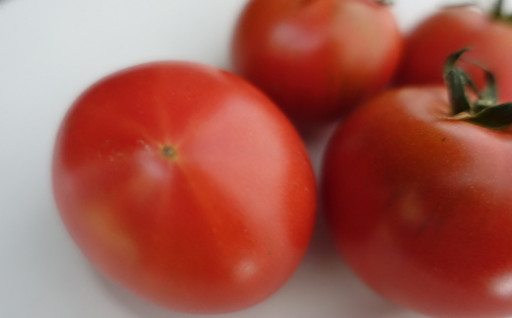 ★予約受付開始★大玉・フルーツトマト・ミニトマト
