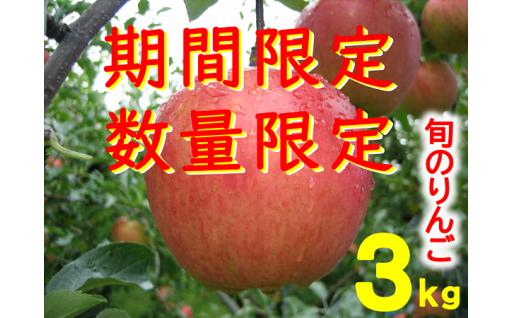 飯南町産の旬のりんごをお届け♪