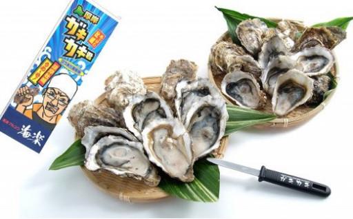 【牡蠣の日】栄養豊富な牡蠣を沢山食べましょう!
