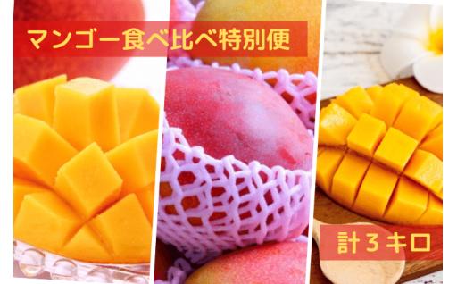 贅沢なマンゴー食べ比べ便【55,000円】