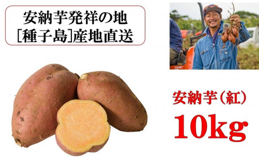 中種子町イチオシ うずえ屋 安納芋(紅)10kg