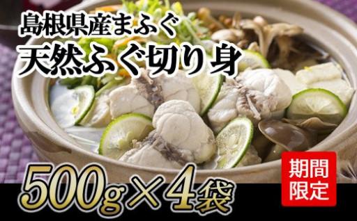 今だけ増量!島根県産天然真ふぐ切り身2kg!