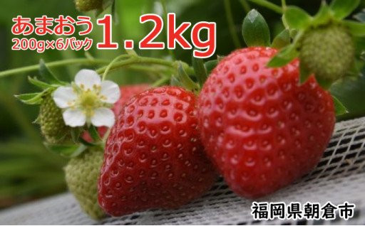 福岡県特産「あまおう」約1,200g