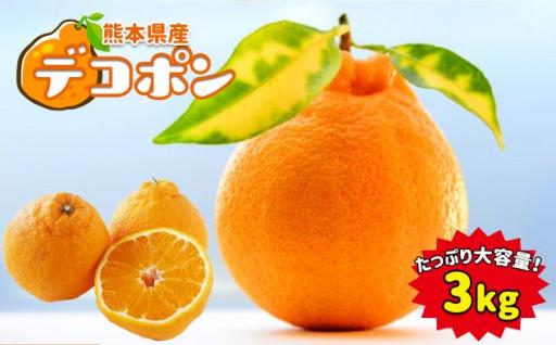 熊本県産デコポン 約3kg