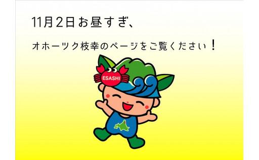 11/2 お品を追加します!【オホーツク枝幸】