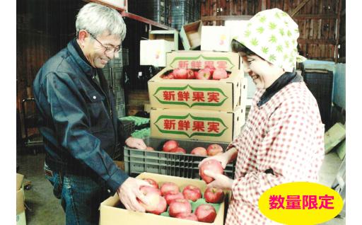 【受付中】りんご・ふじ(1箱10kg入り)