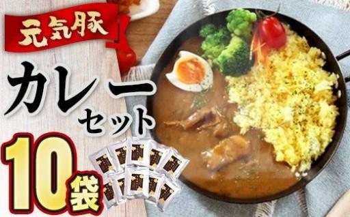 お肉がゴロッと!【元気豚】カレーセット 10袋