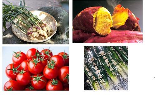 出雲の新鮮・おいしい野菜特集