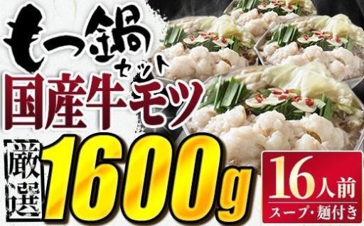 16人前!!特選国産もつ鍋+麺・スープセット