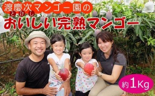 渡慶次マンゴー園の完熟マンゴー1Kg