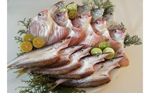 こだわりの小松島の真鯛たっぷり干物15枚セット