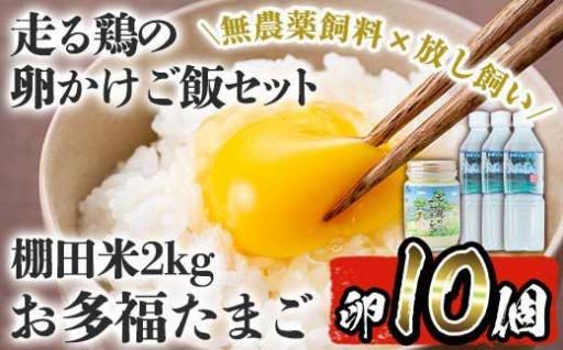 走る鶏の卵かけご飯!卵・米・水・マヨネーズセット