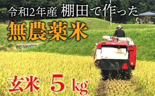 【新米】赤村産棚田米こだわりの夢つくし(玄米)