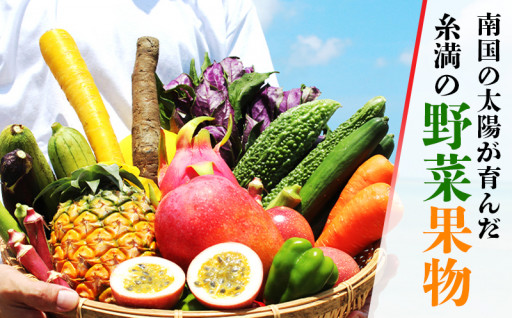 南国の太陽が育んだ糸満の野菜果物をご紹介します