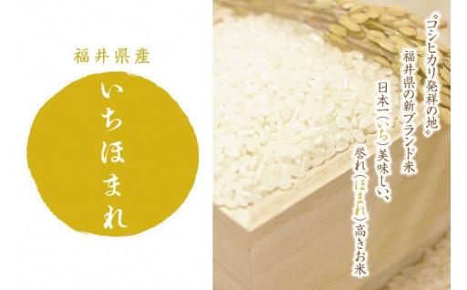 12月発送:福井県産いちほまれ:5kg×2