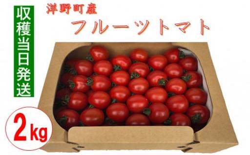 【収穫当日発送】完熟フルーツトマト 2kg