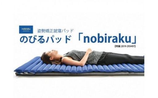 【NEW】姿勢矯正就寝パッド ノビラク
