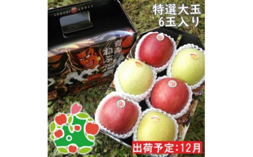 【新登場】返礼品に新しいりんごを追加しました!